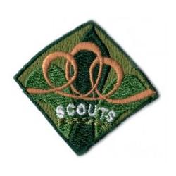 Scouts etapa de integración