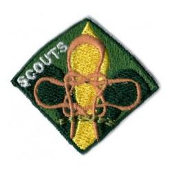 Scouts etapa de participación