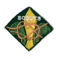 Scouts etapa de animación