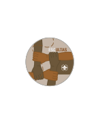 Insignias esculta asde scout